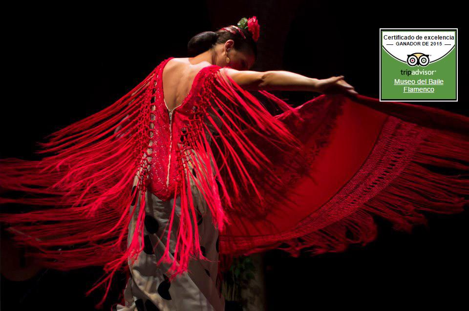 Museo del baile flamenco de cristina hoyos for Espectaculo flamenco seville sevilla